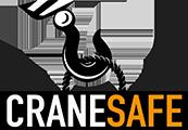 CraneSafe 2020